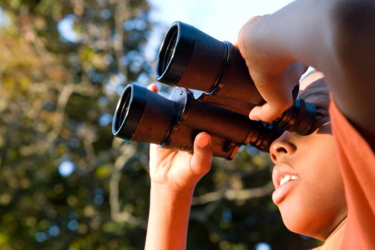 files/images/Binoculars-768x512.jpg