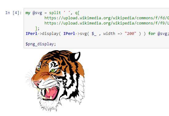 files/images/Jupyter_Perl_Tiger.JPG