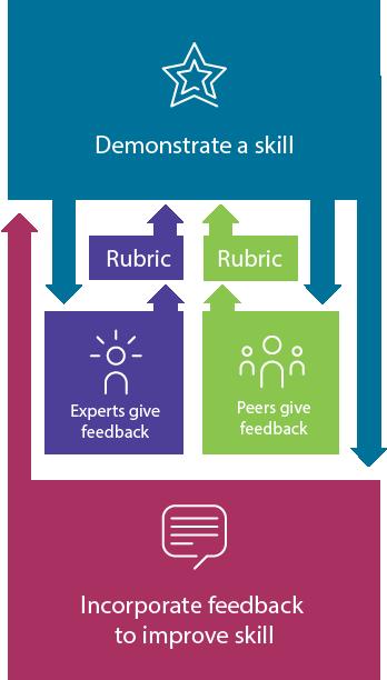 files/images/SA-feedback-diagram-rubric-web.png