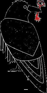 files/images/Scihub_raven.png