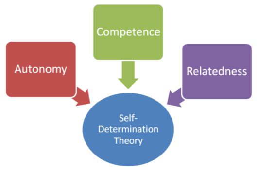 files/images/SelfDeterminationTheory.png
