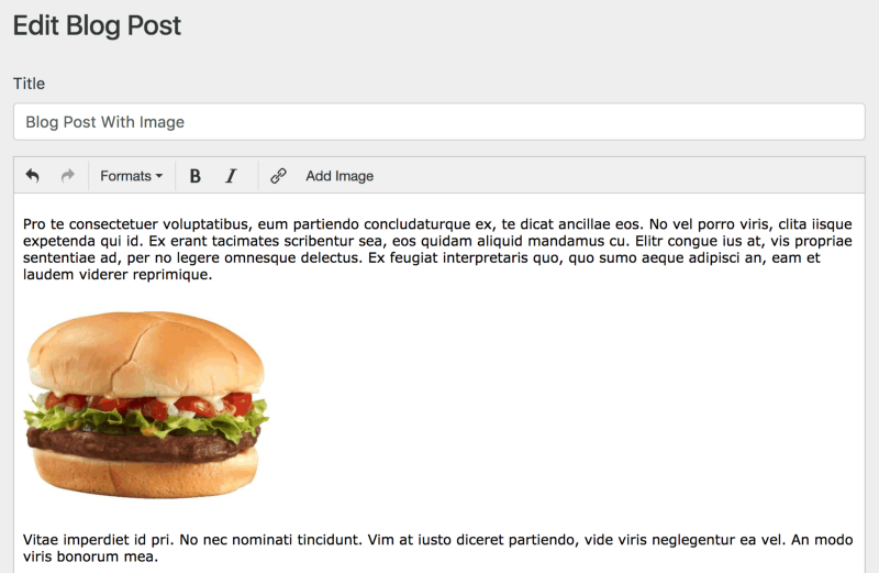 files/images/blog-burger.png