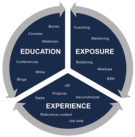 files/images/education-exposure-experience.png