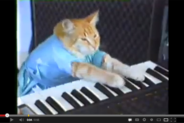 files/images/keyboardcat.jpg